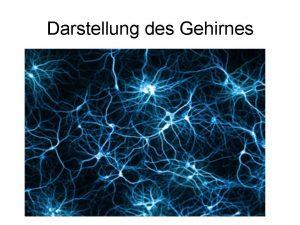 Gehirngitarre-Theorie zur Funktion des Gehirns